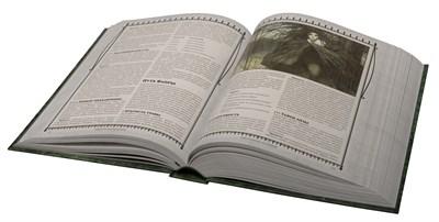 Вампиры: Маскарад. Классические правила в коробе - фото 5104